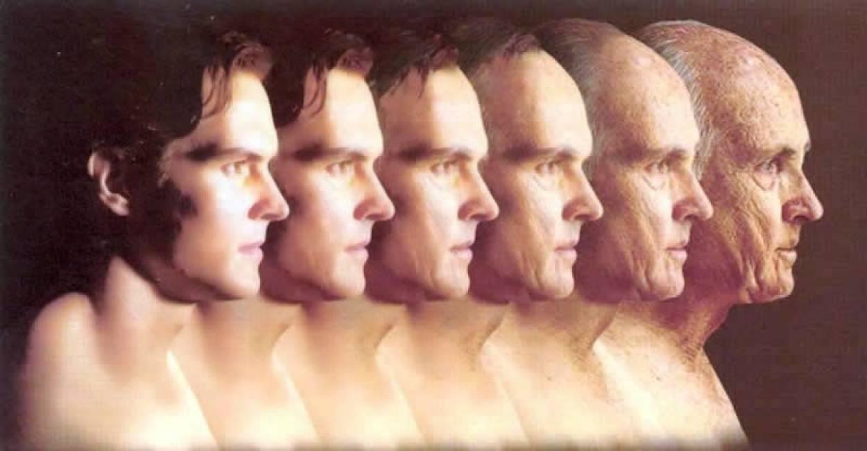 Почему мы стареем?