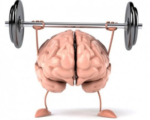 Спорт помогает качать не только мышцы, но и мозг