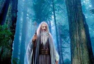 Законы древних друидов