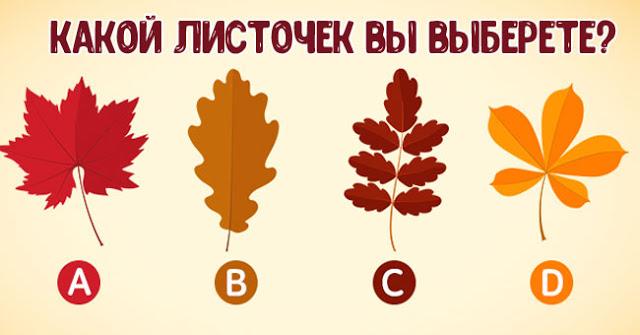 Выберите листочек и узнайте, какой вы человек в отношениях
