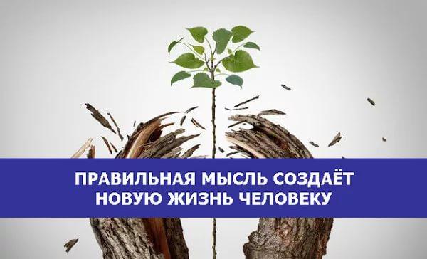 Правильная мысль создает новую жизнь человеку   6:24   жизнь  , мысли  , эзотерика