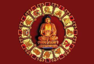 Тибетский гороскоп: узнай свою судьбу с точностью 97%