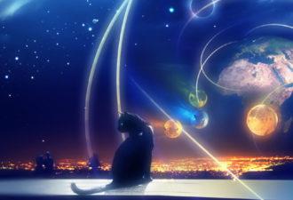 Подсказки Вселенной