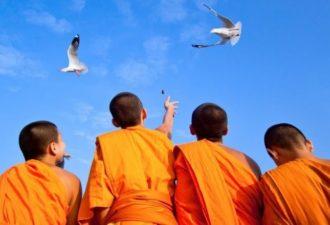 Мир в душе! Тысячелетняя мудрость Гималайских монахов!