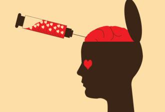 Как ведет себя наш мозг, когда мы по-настоящему влюбляемся?