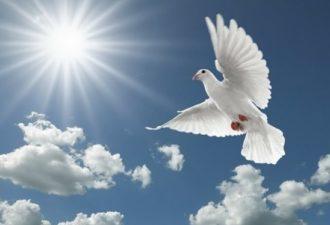 3 знака того, что ангелы напутствуют вас