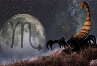 Земля вступила в созвездие Скорпиона: что нужно знать об этом знаке