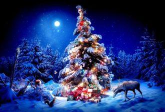 Новогодние приметы и ритуалы: как привлечь удачу, любовь и достаток?