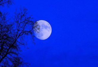 Три в одном: 31 января совпадут суперлуние, лунное затмение и голубая Луна