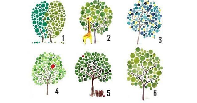 Тест: выберите дерево и узнайте, в правильном ли вы направлении двигаетесь!