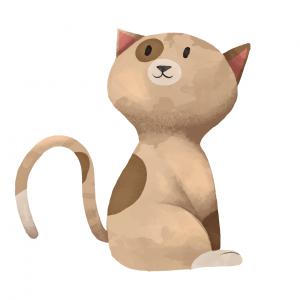 Тест. Какую кошку вы выберете?Тест. Какую кошку вы выберете?Тест. Какую кошку вы выберете?Тест. Какую кошку вы выберете?Тест. Какую кошку вы выберете?Тест. Какую кошку вы выберете?Тест. Какую кошку вы выберете?Тест. Какую кошку вы выберете?Тест. Какую кошку вы выберете?