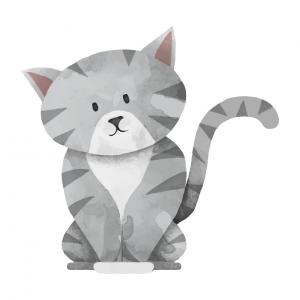 Тест. Какую кошку вы выберете?