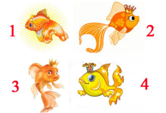 Выбранная Золотая рыбка, расскажет когда исполнится ваша заветная мечта