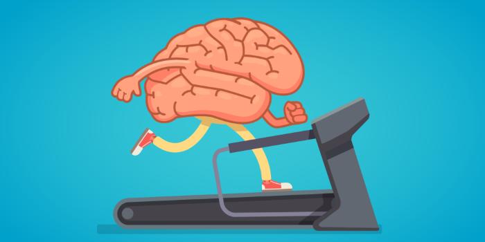 Как физические упражнения влияют на ваш мозг