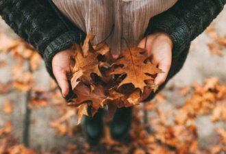 Знаки зодиака: как вы можете испортить себе октябрь?