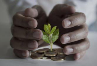 Система «Kakebo»: японский лайфхак, который поможет вам правильно управлять своими деньгами