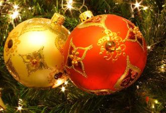 Гороскоп на новогоднюю ночь 2019 года Желтой Свиньи