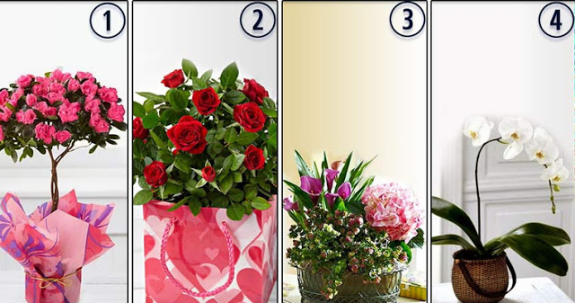 Выберите цветы и узнайте, какой у вас язык любви!