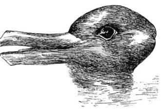 Необычный тест: Вы видите утку или кролика?