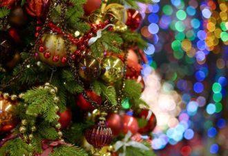Как украсить елку на Новый год 2017: советы фэн-шуй