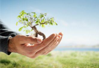5 рекомендаций, которые способствуют саморазвитию