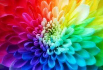 Какие цвета создают хорошее настроение?