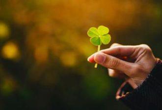 10 признаков приближающегося везения: какие знаки сулят достаток и удачу