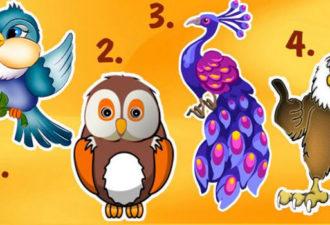 Назови самую симпатичную птичку здесь, а мы расскажем твои положительные и отрицательные черты!