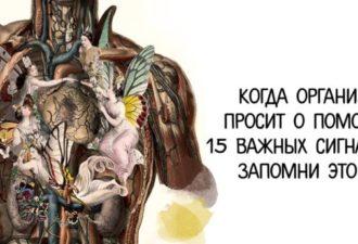 Когда организм просит о помощи: 15 важных сигналов — ЗАПОМНИ ЭТО!!!