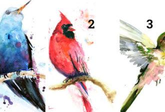 Выберите птицу и получите духовное послание!