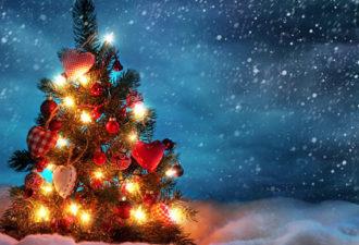 Рождественский дух может помочь вам зажечь искру внутри себя!