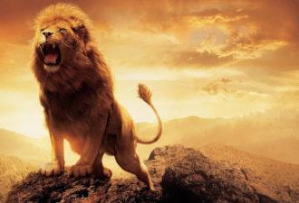 Лидеры и самые сильные люди среди знаков зодиака